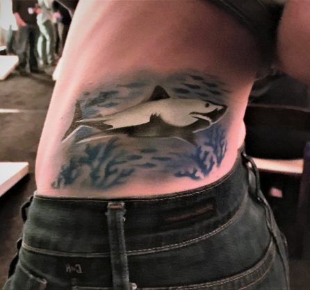 Shark side flipped